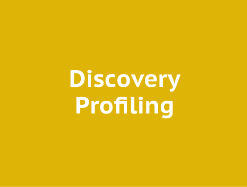 Profiling – Discovery